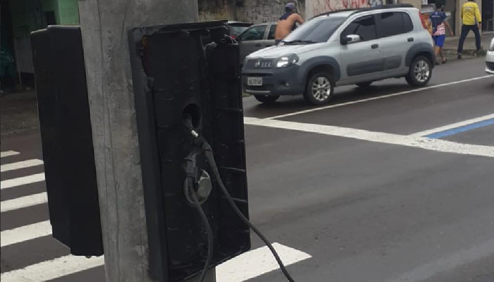 Fotos - Divulgação/IMMU