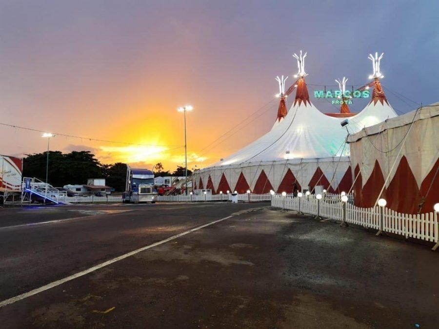 Amazonas Festival de Circo