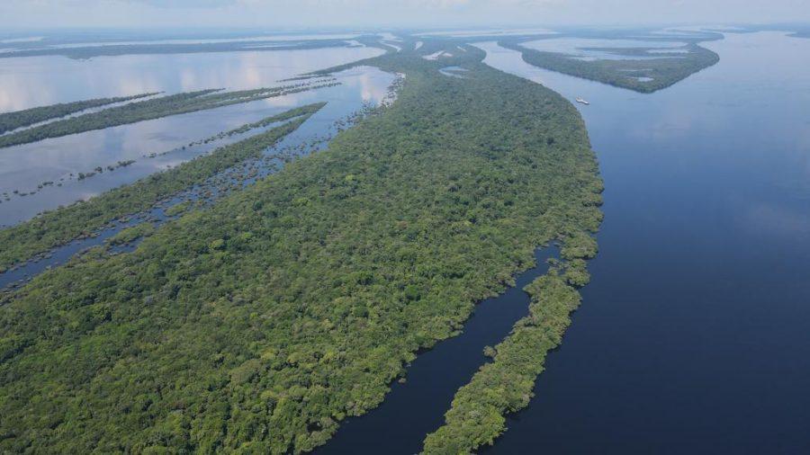 Amazonas emissões de gases de efeito estufa